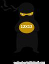 12X12 NINJA