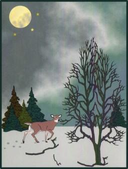 winter-walk-night-2