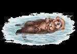 OtterPup_WhoWill_MilankaR