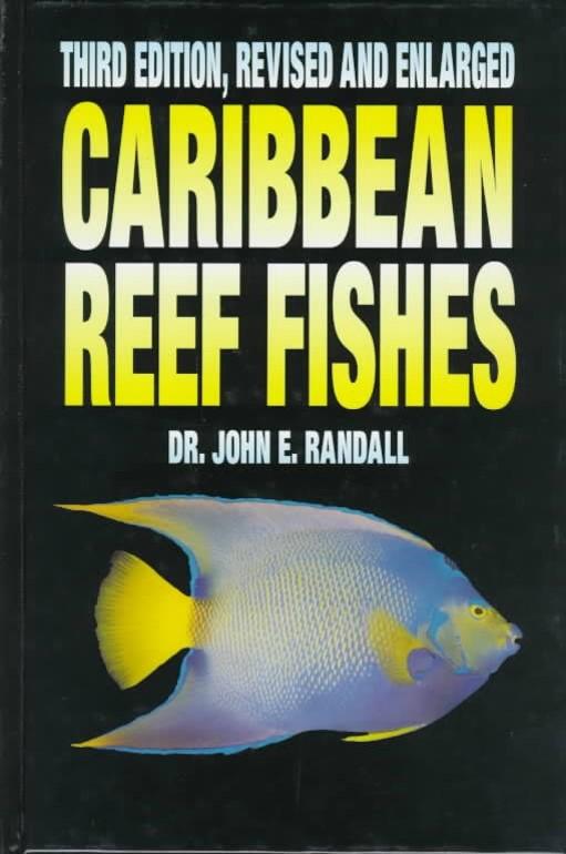 Dr. R book 2
